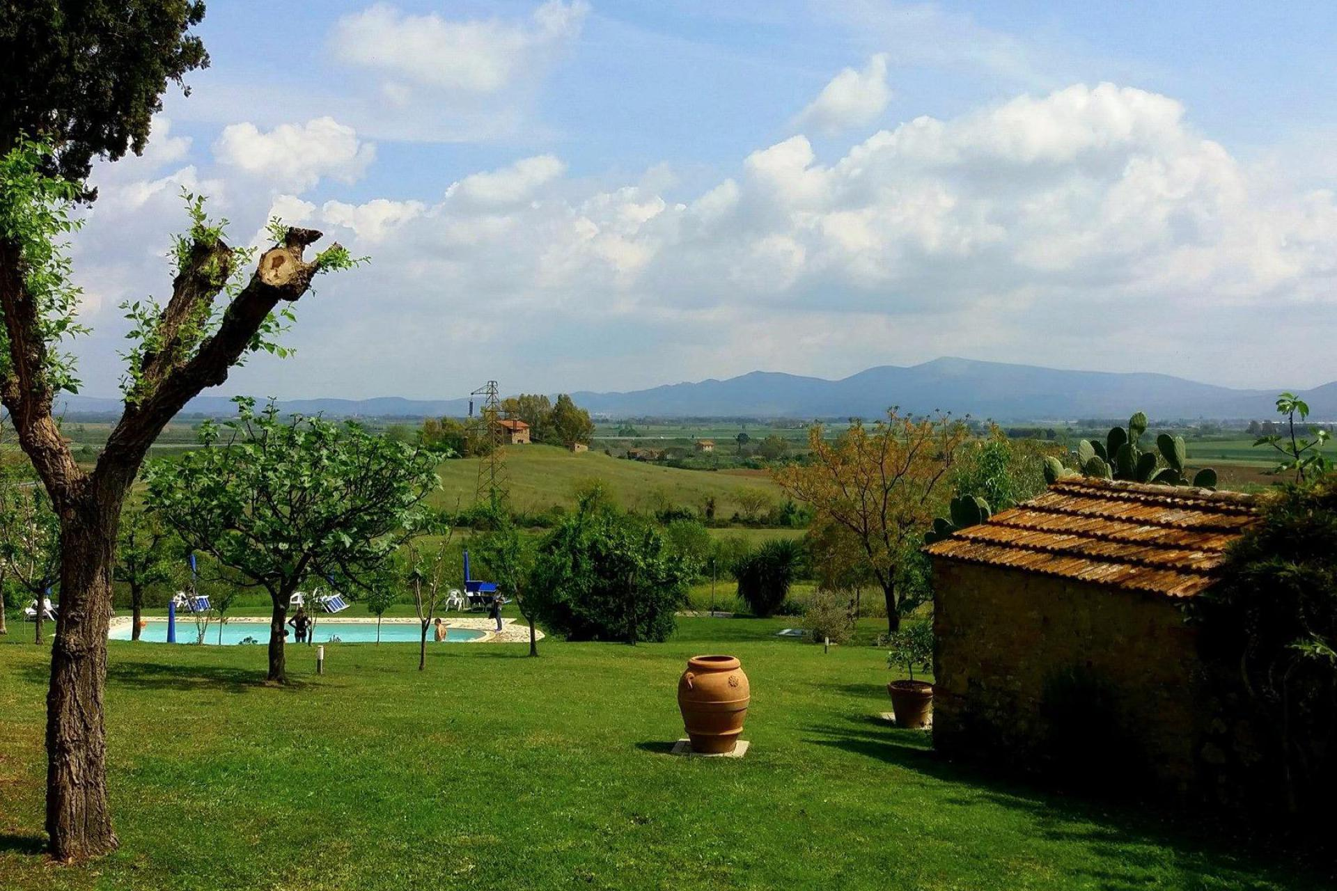 Agriturismo Tuscany Quiet olive agriturismo near the sea in Tuscany