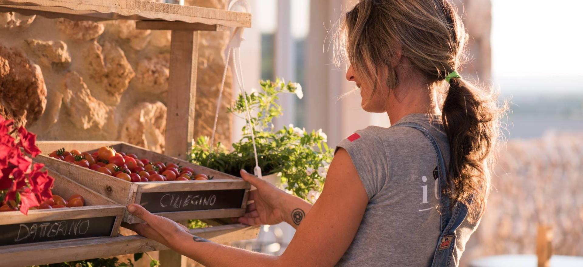 Agriturismo Sicily Organic agriturismo Sicily with sea view