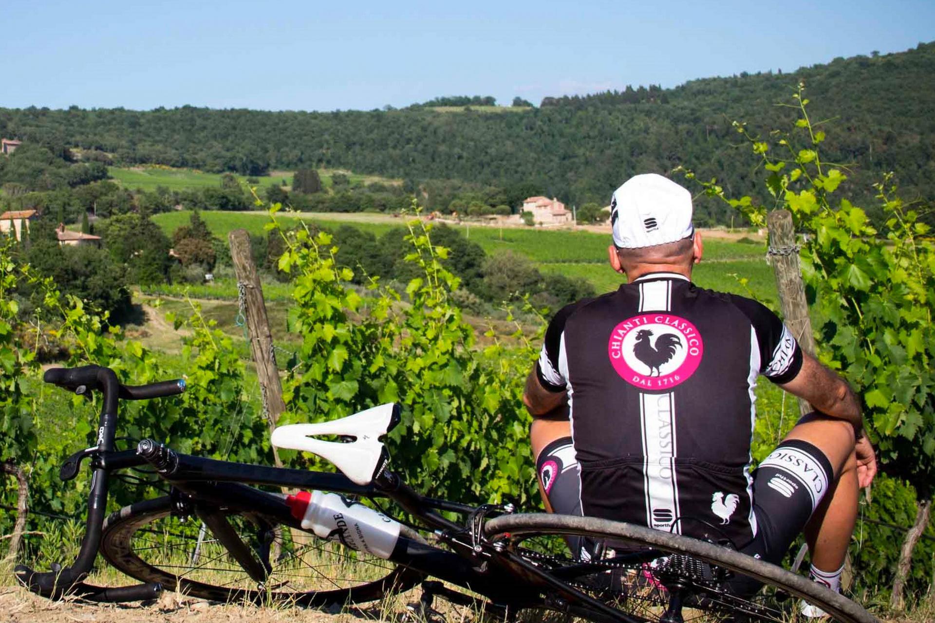 Agriturismo Toscane Grote agriturismo centraal in Toscane met prachtig uitzicht