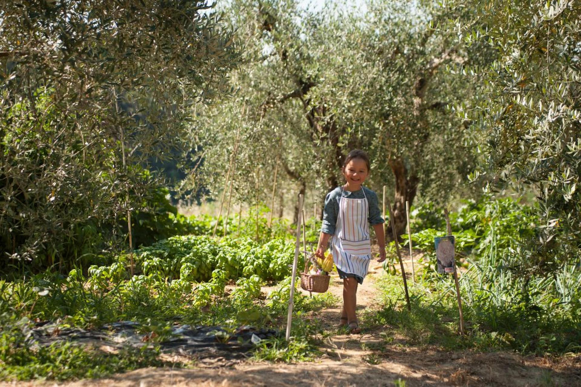 Agriturismo Toscane Luxe agriturismo Toscane met kookworkshop Italië | myitaly.nl