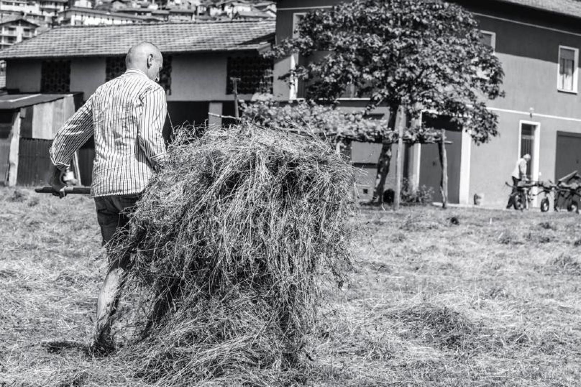 Agriturismo Comomeer en Gardameer Gezellige agriturismo op loopafstand van Comomeer