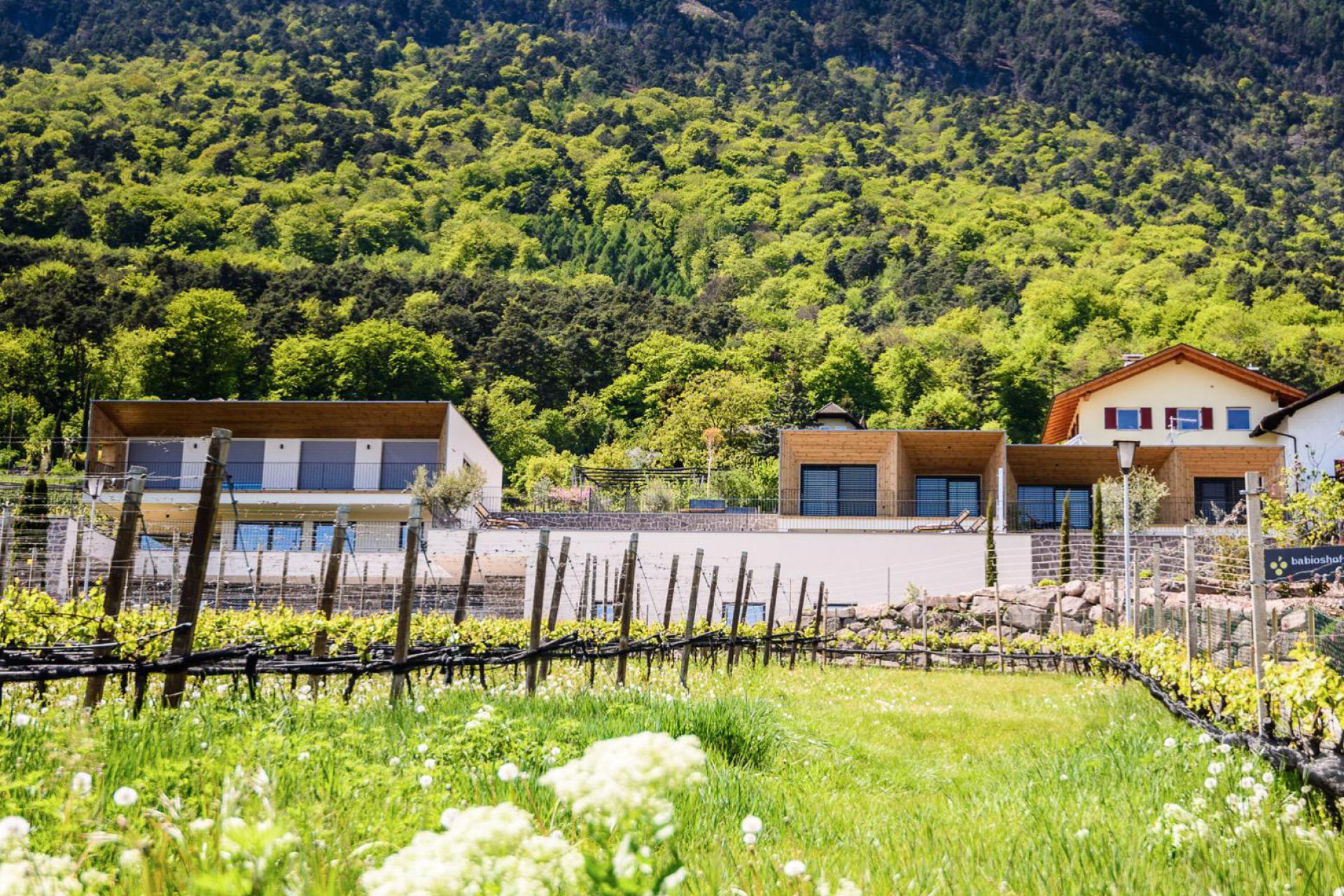 Agriturismo Dolomieten Knusse agriturismo tussen de appelbomen en wijngaarden