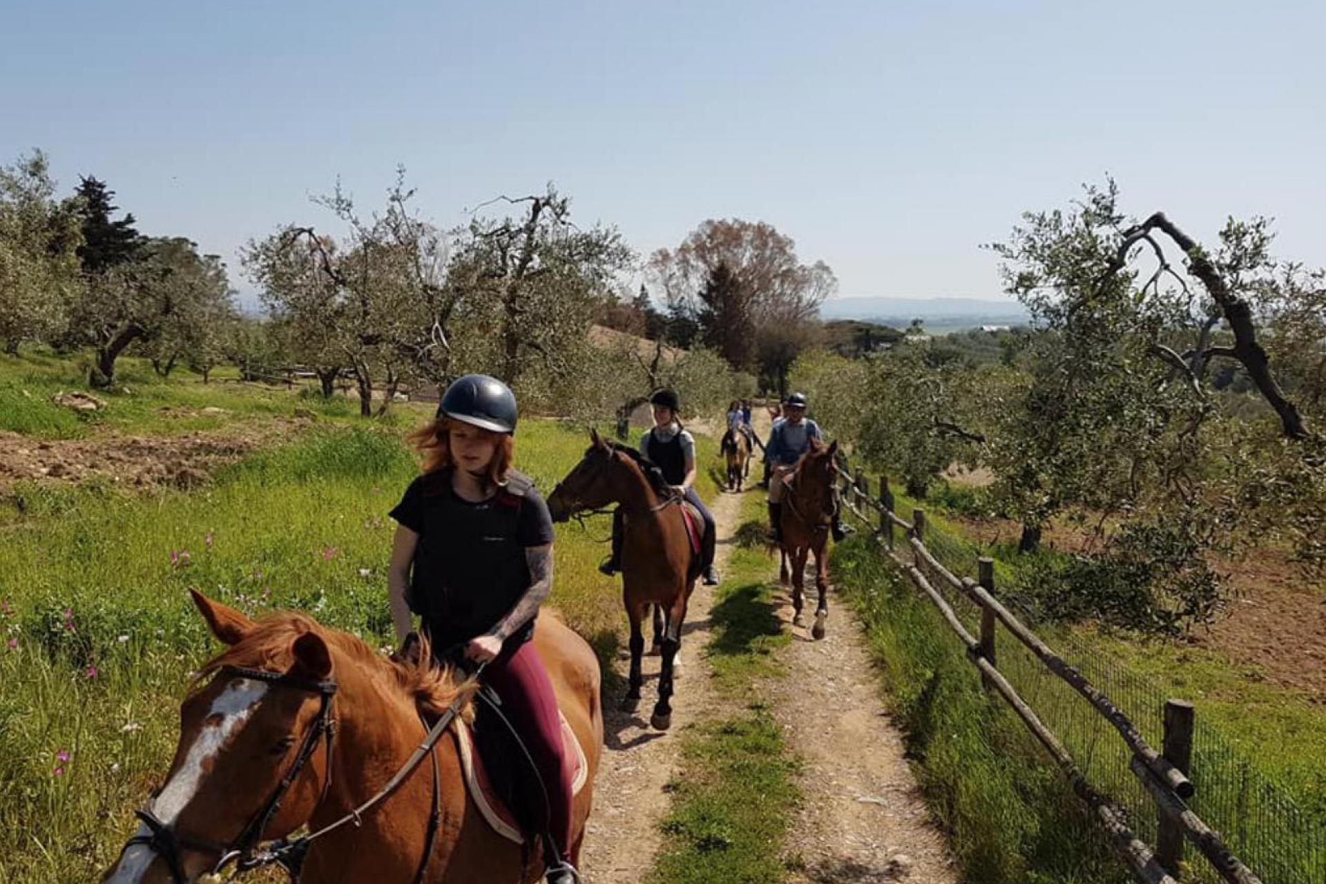 Agriturismo Toscane Vakantie aan de Toscaanse kust | myitaly.nl
