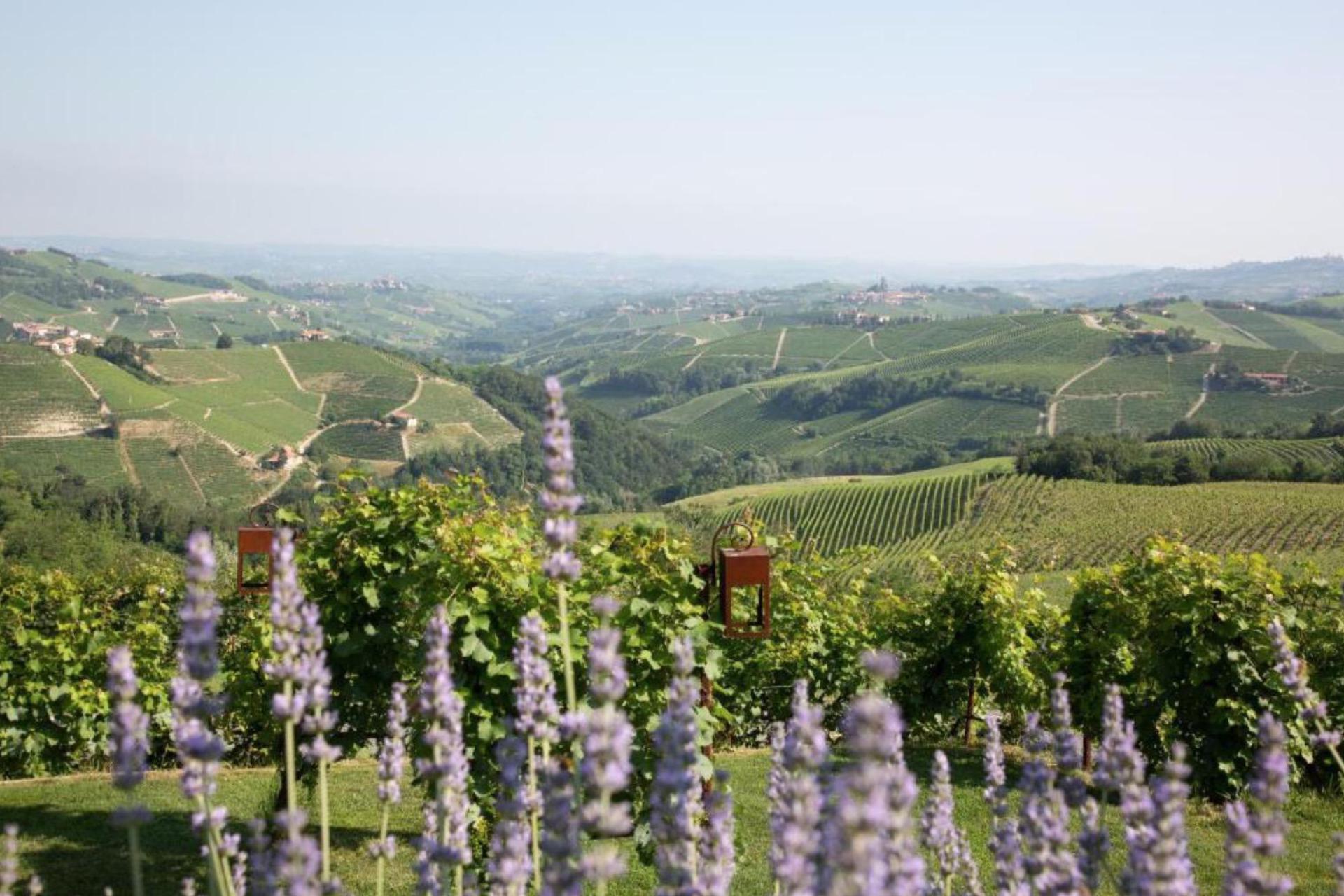 Agriturismo Piemonte Agriturismo Piemonte, goed restaurant en wijnkelder