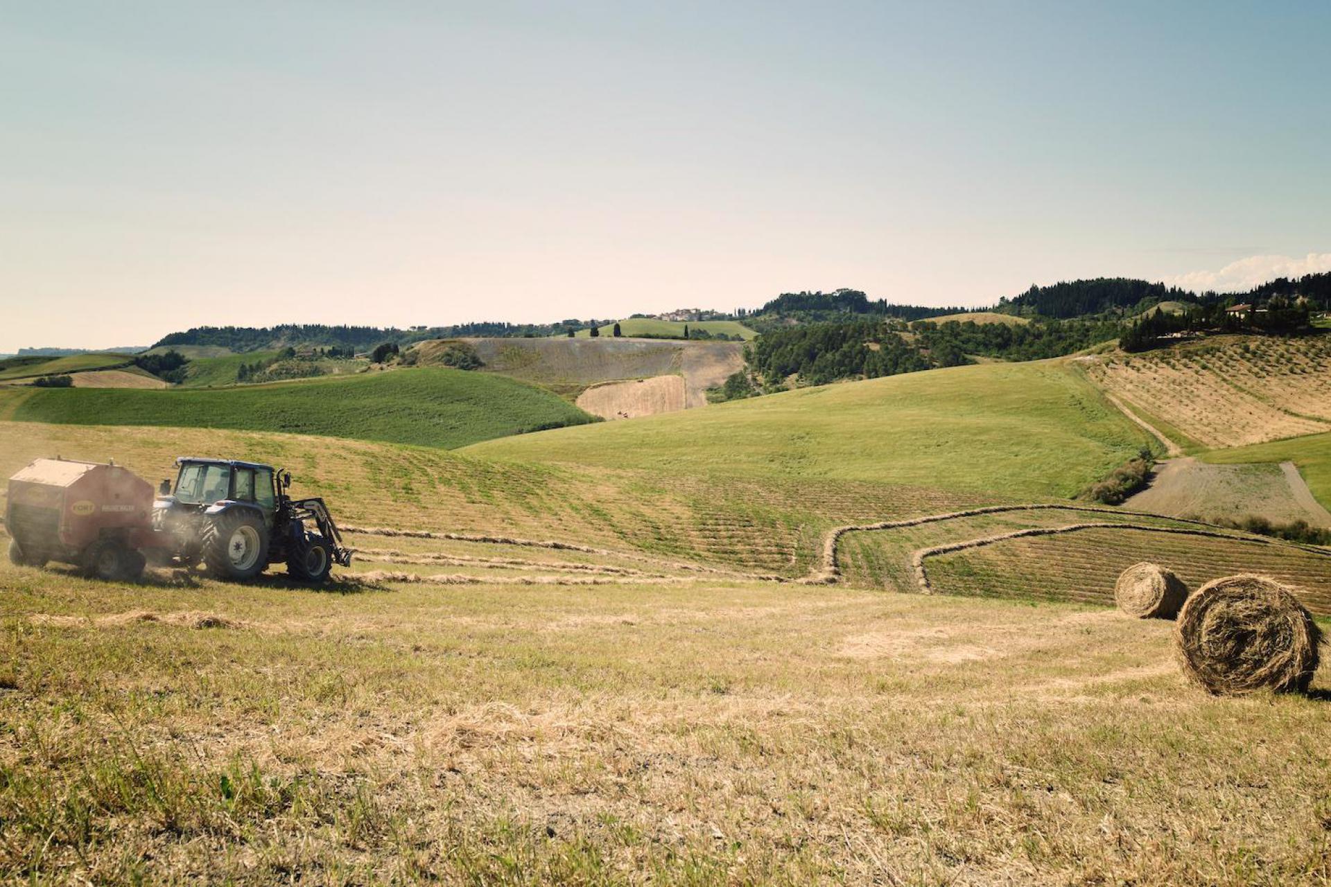 Agriturismo Toscane Klassieke agriturismo in landhuis Toscane | myitaly.nl