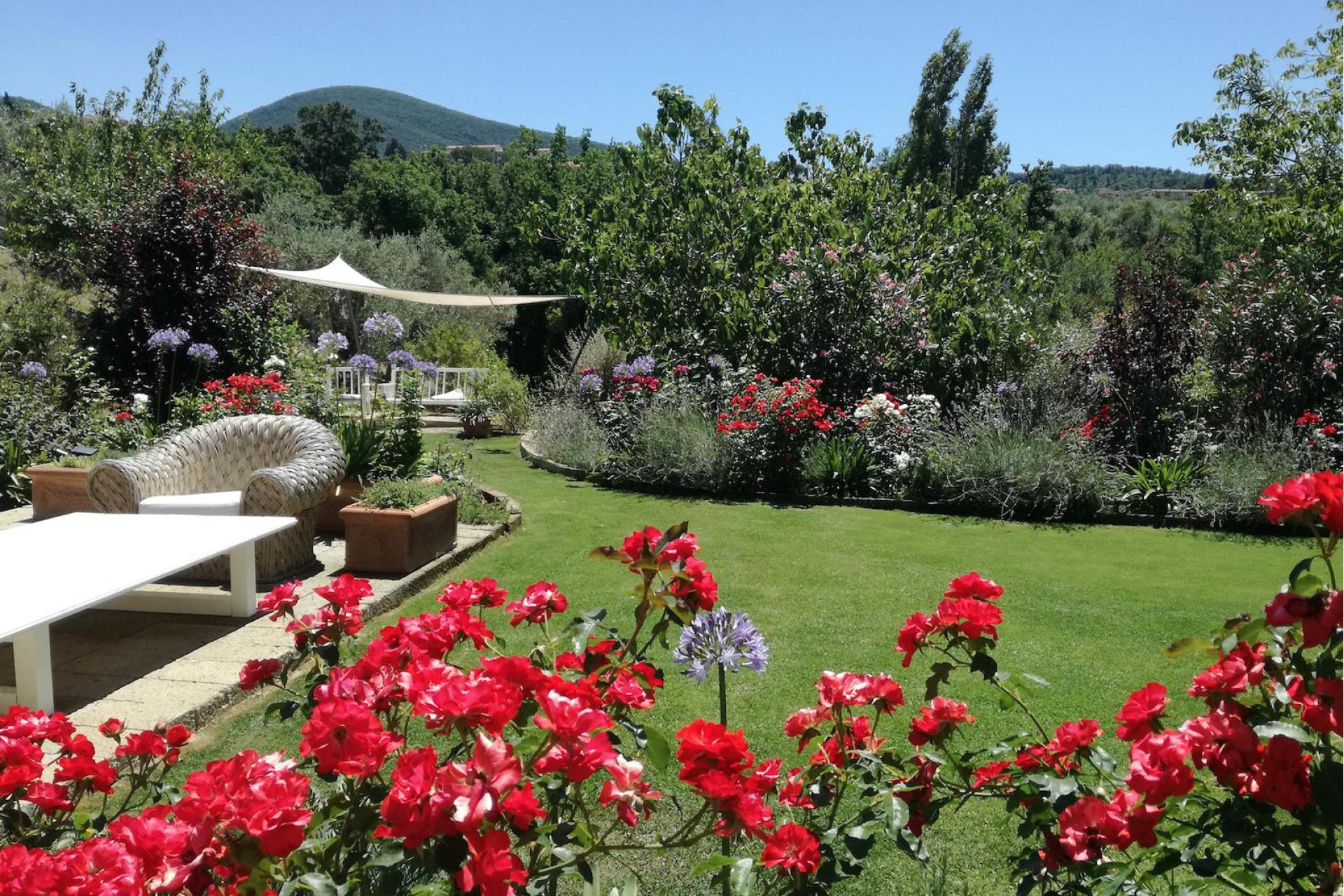 Agriturismo Toscane Agriturismo in olijfgaard met super uitzicht in Toscane