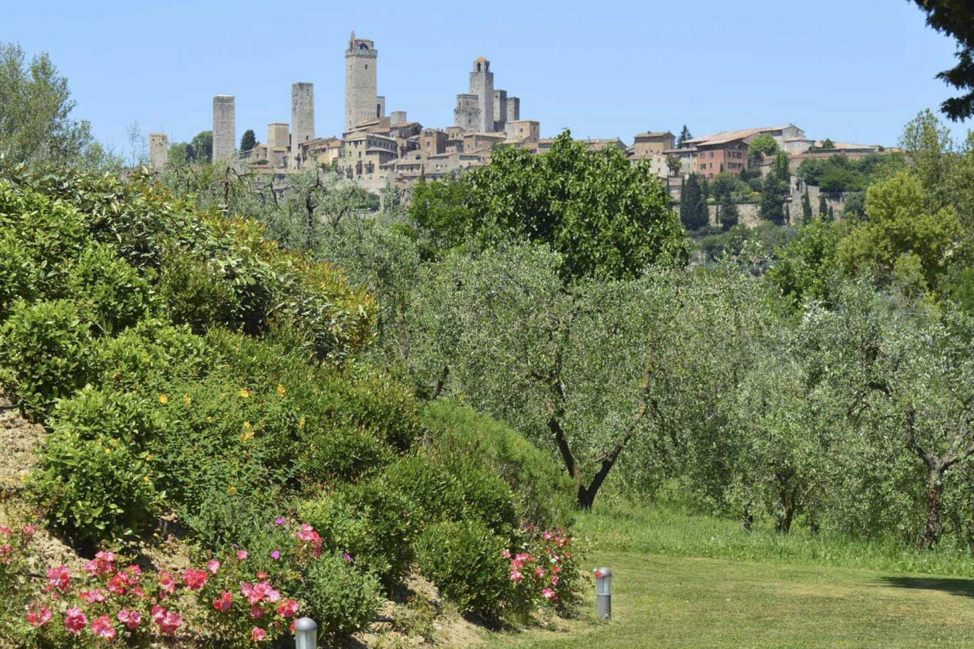 Agriturismo Toscane Kleine agriturismo met uitzicht op San Gimignano | MyItaly.nl