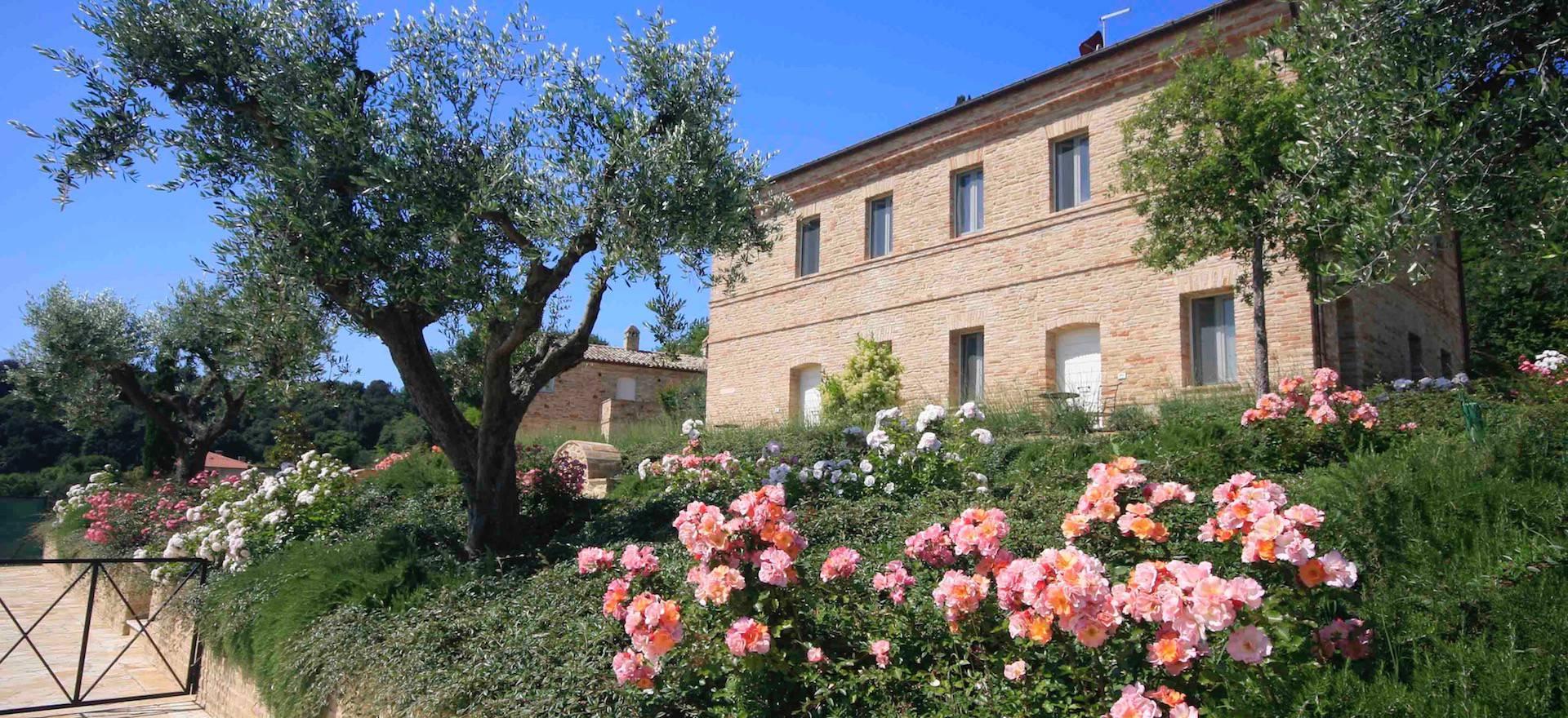 Agriturismo Le Marche Agriturismo le Marche, elegante kamers met zeezicht