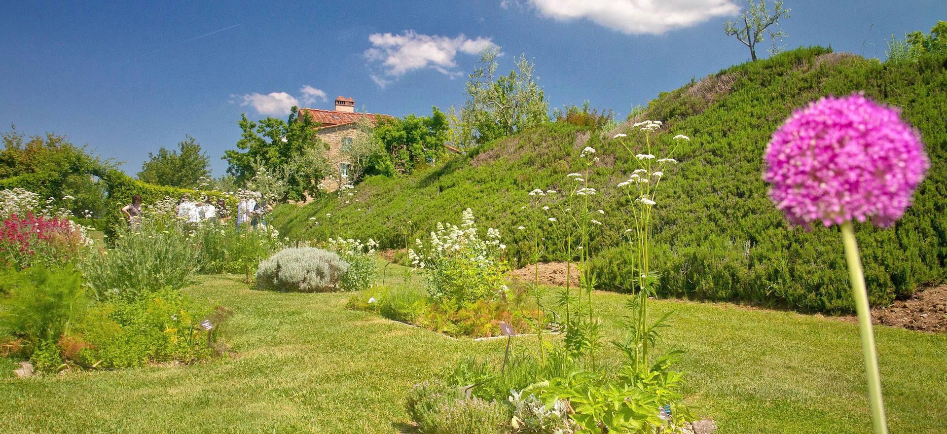 Agriturismo Toscane Agriturismo Toscane, luxe appartementen en mooi uitzicht