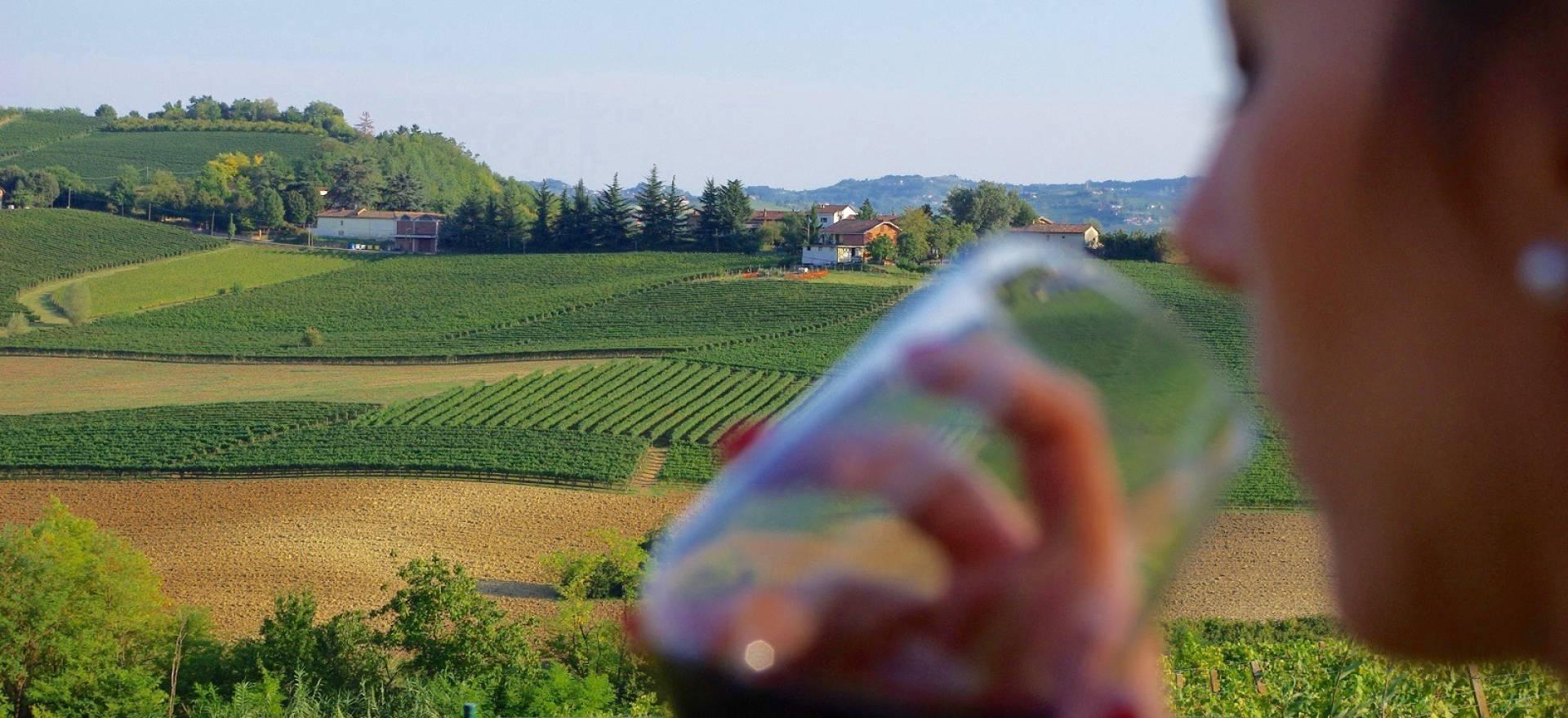 Knusse agriturismo in Piemonte tussen de wijngaarden