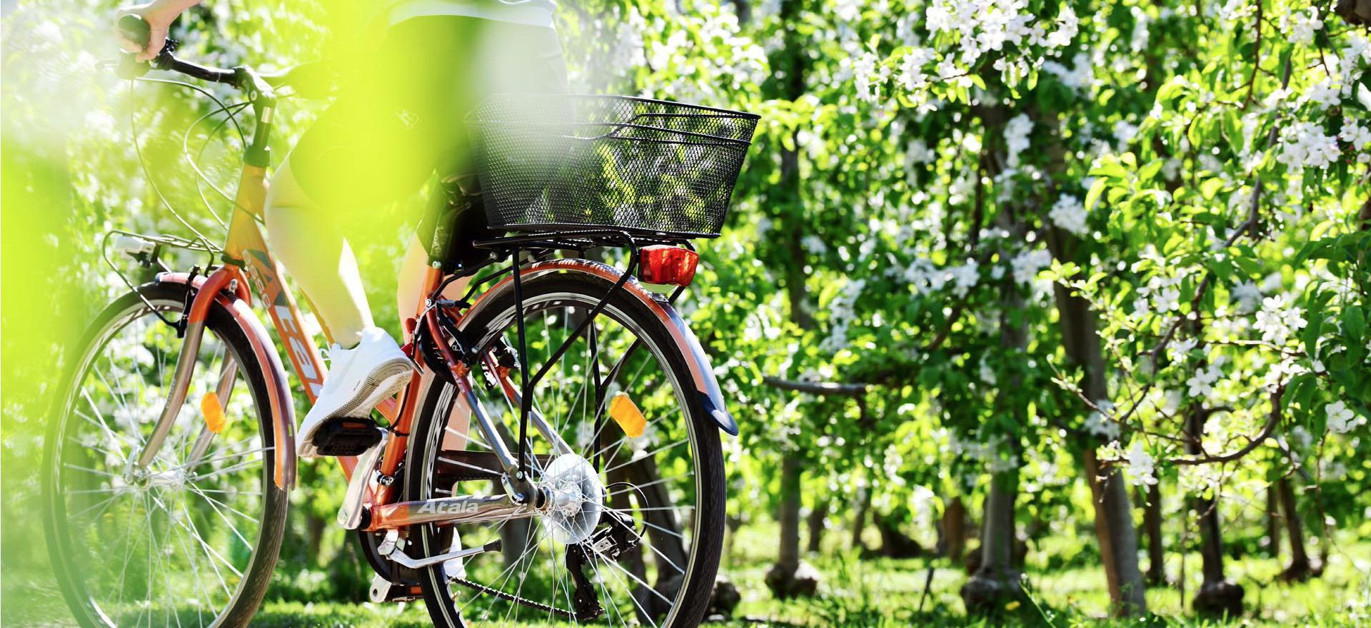 Knusse agriturismo tussen de appelbomen in de Dolomieten