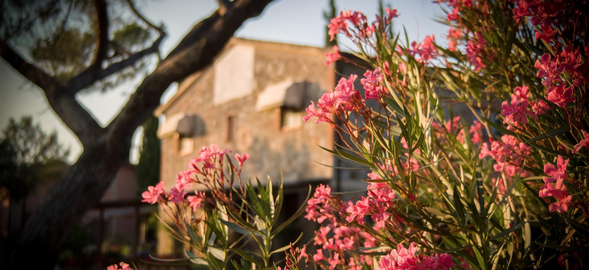 Rustige agriturismo in Toscane met vriendelijke eigenaren