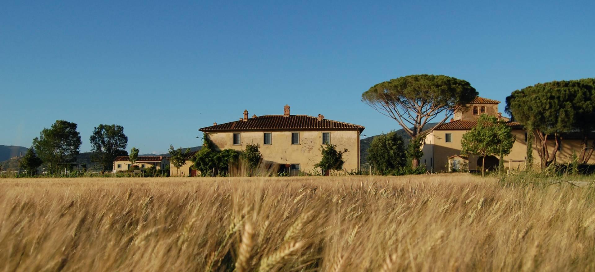 Gastvrije agriturismo nabij Cortona