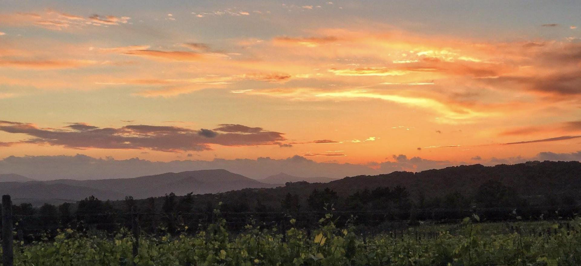 Prachtige agriturismo bij Montalcino