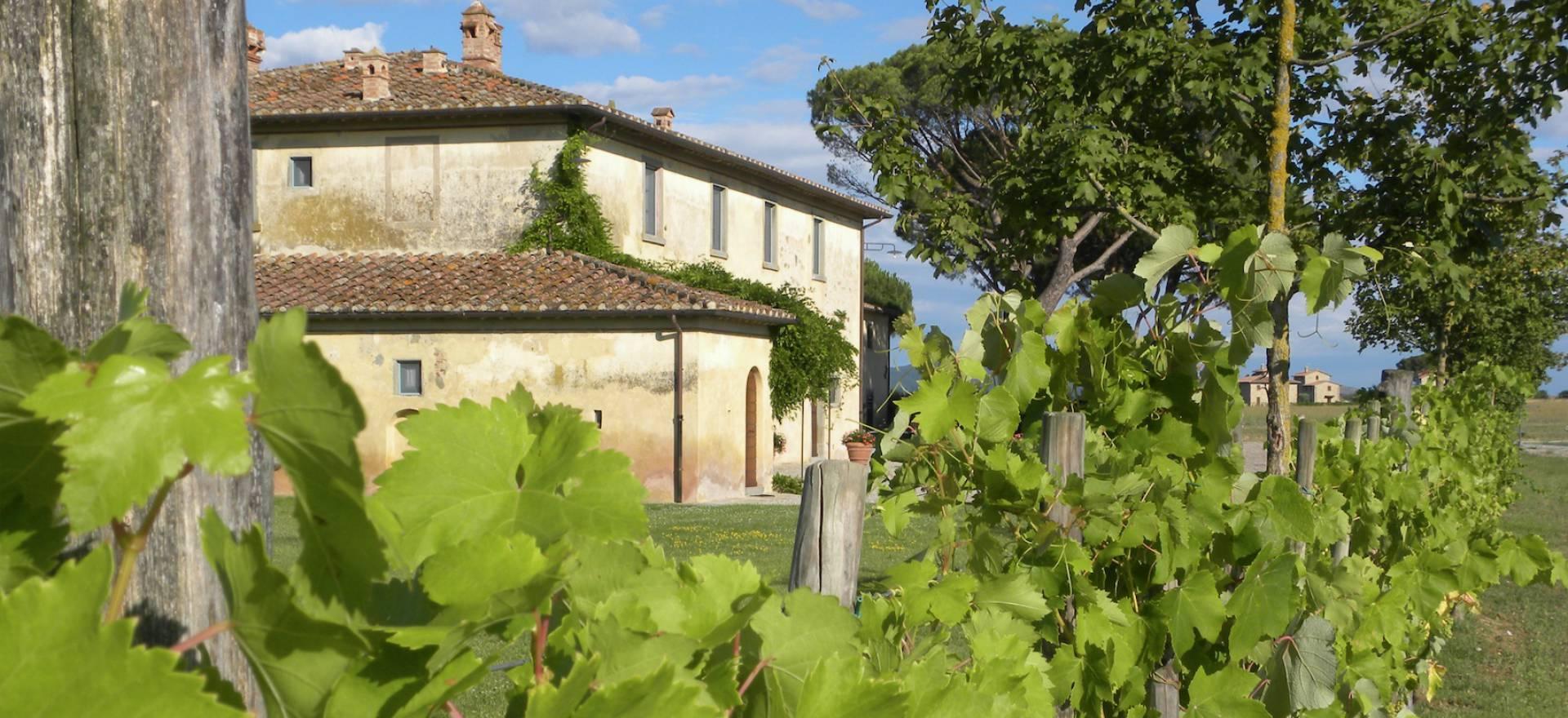 Agriturismo Toscane Gastvrije agriturismo nabij Cortona