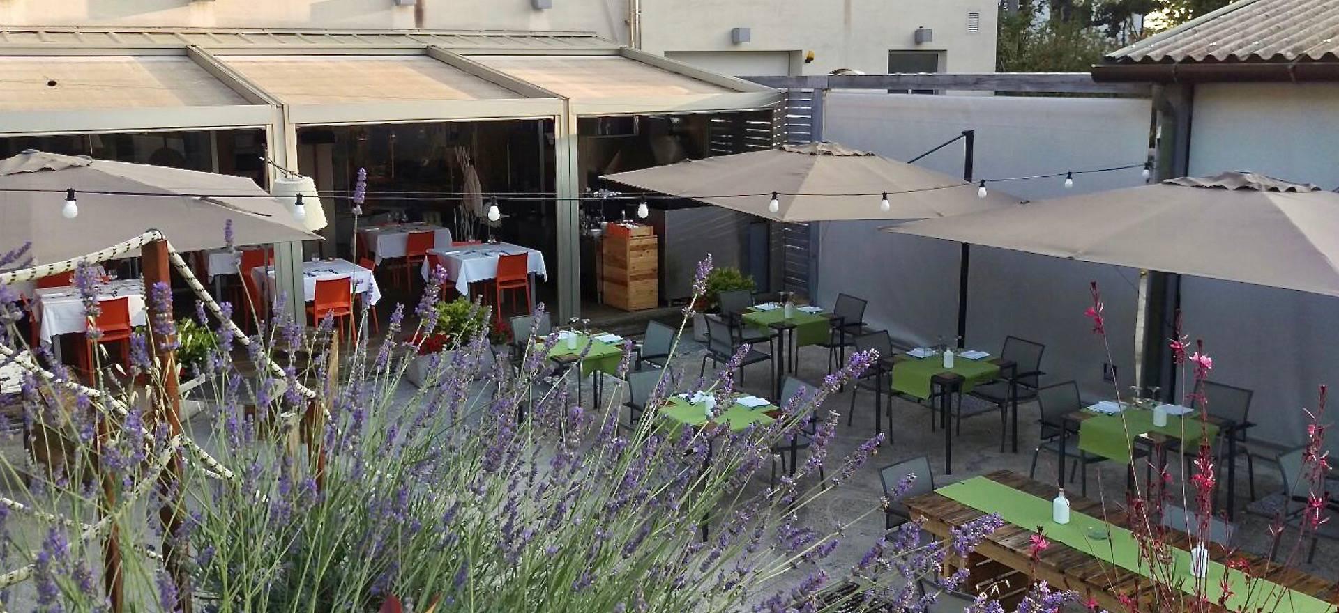 Leuke agriturismo le Marche met restaurant in olijfgaard